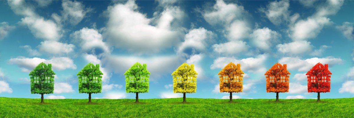 Produkcja środków czystości, które są przyjazne środowisku